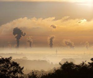 Beitragsreihe Zur Nachhaltigkeit: Wovon Wir Träumen…