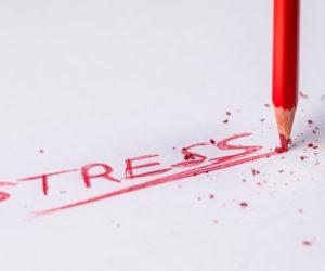 Beitragsreihe Zum Thema Stress Und Burnout – Eine Einführung